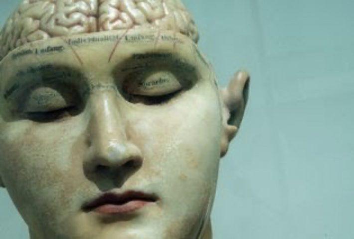 OCD brain